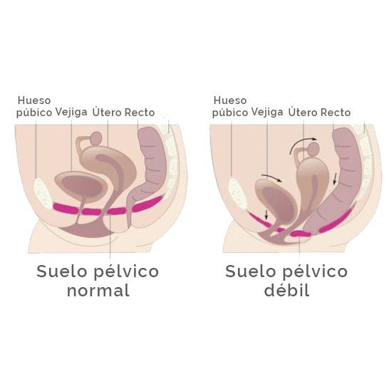 esquema de relajacion vaginal